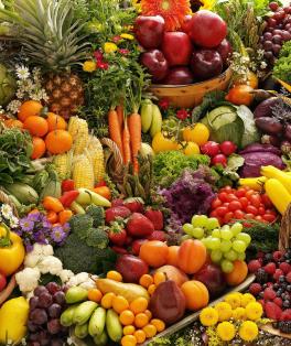 Cartilha Pequeno Gourmet - Alimentação saudável