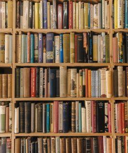 Dia Mundial do Livro - Literatura - dicas literárias durante a quarentena