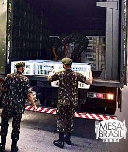 Mesa Brasil e Exército distribuem alimentos no Complexo do Lins Vertical