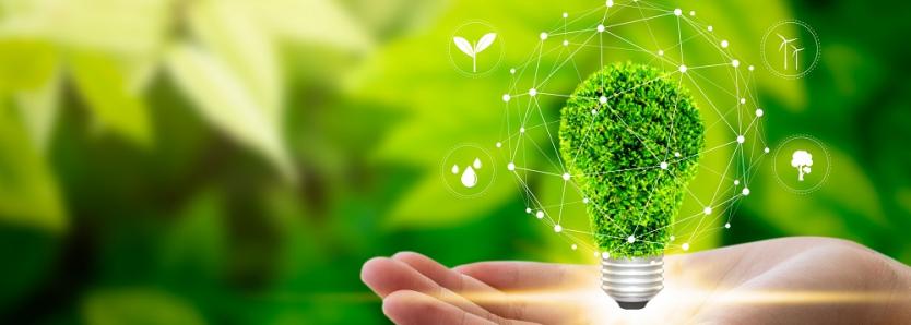 sustentabilidade news - reciclagem - sustentabilidade