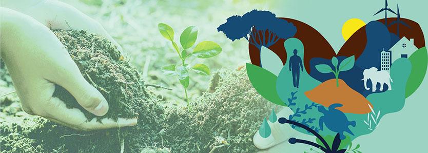 Sustentabilidade News