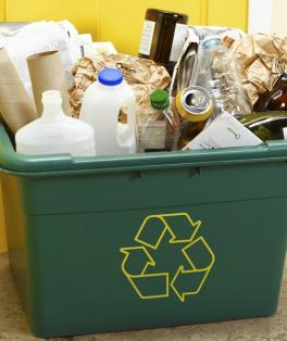 Live com dicas para reduzir a produção de lixo residencial